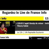 FranceInfo ThierryVallat Video 2015 06 10 121625