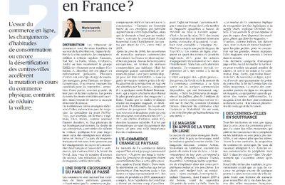 Dans les médias (195) : Le Figaro : Y-a-t-il trop de magasins en France ?