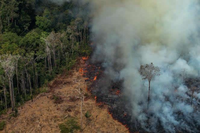 Une parcelle de forêt en train d'être illégalement défrichée par le feu dans la municipalité de Candeias do Jamari, au nord-ouest du Brésil, le 24 août 2019 VICTOR MORIYAMA / AFP / GREENPEACE