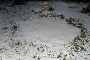 Première neige de décembre 2012. Ce dimanche matin, petite promenade