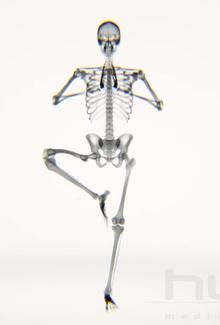 Yoga aux Rayons X
