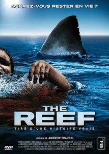 L'oeil de Crazy Bug : The Reef