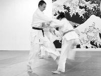 Les bienfaits du Judo
