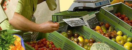 """...zum Hof am Weinberge – Bock auf Tomate?"""""""
