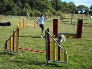SPECIAL AGILITY