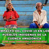 L'impact du COVID-19 sur les peuples indigènes d'Amazonie est élevé - coco Magnanville