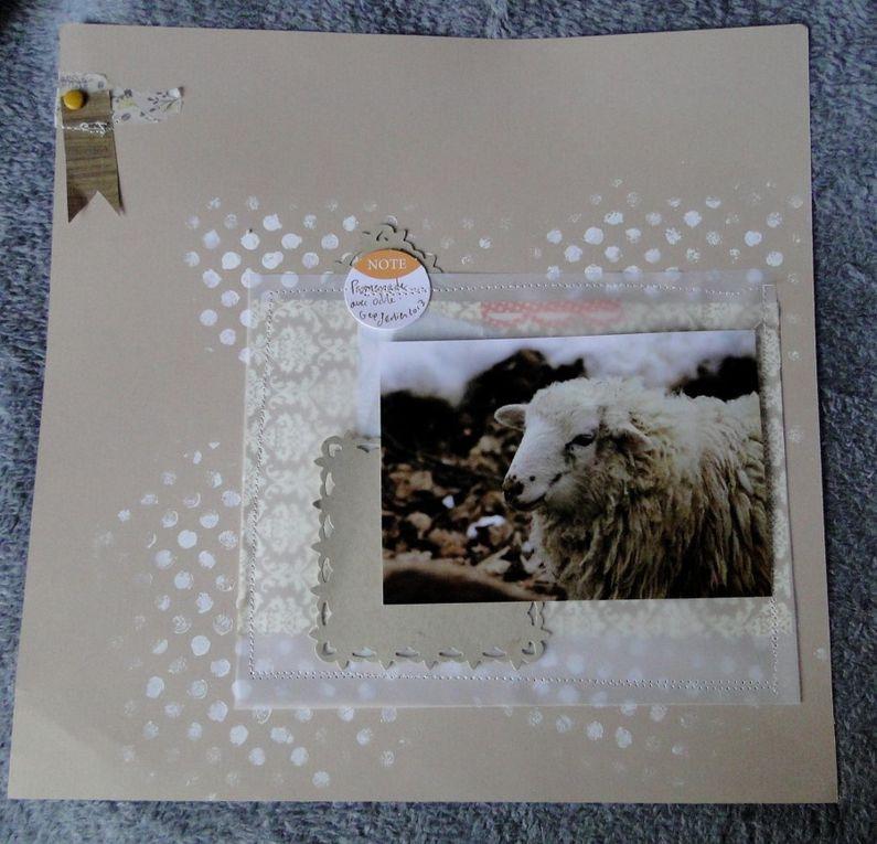 Album - pages