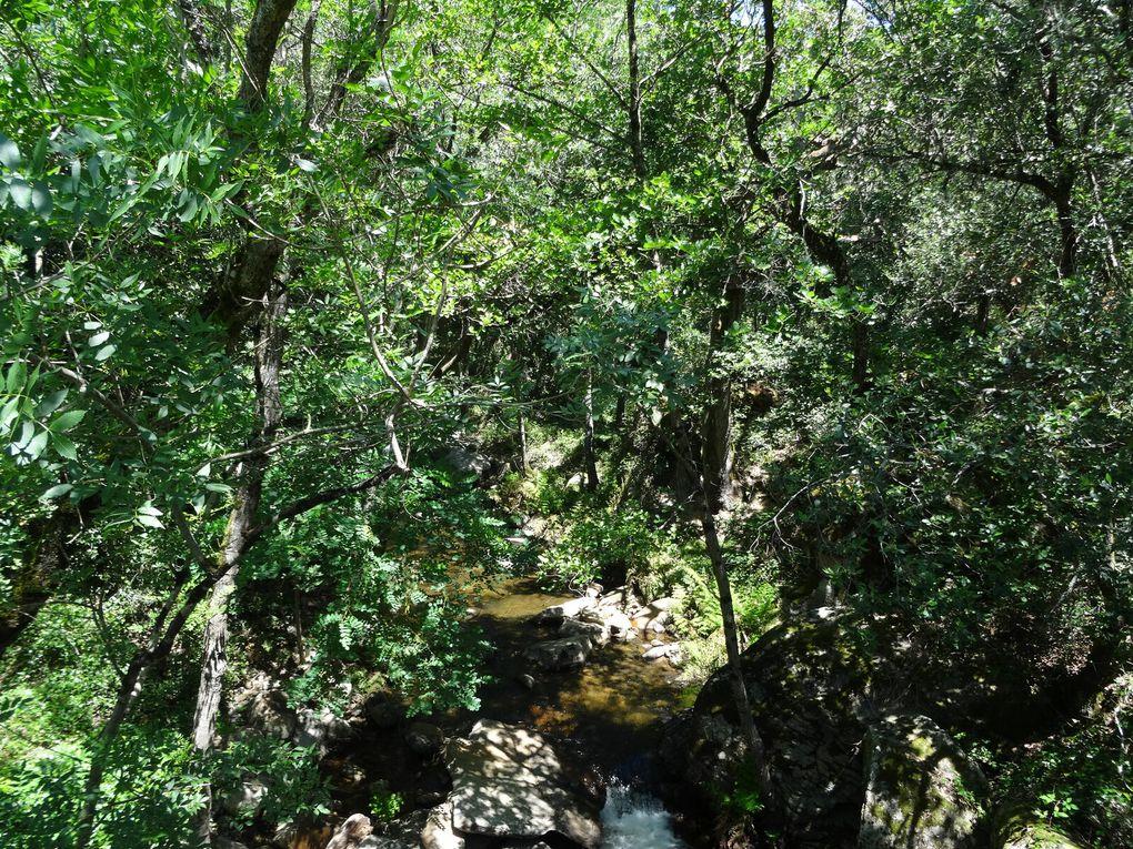Parcours n°7 du site FFC Cabardès - Pays Cathare - au départ d'Aragon (11)