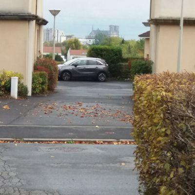 Randonnée du 20 octobre à Saint-Brice-Courcelles avec Daniel