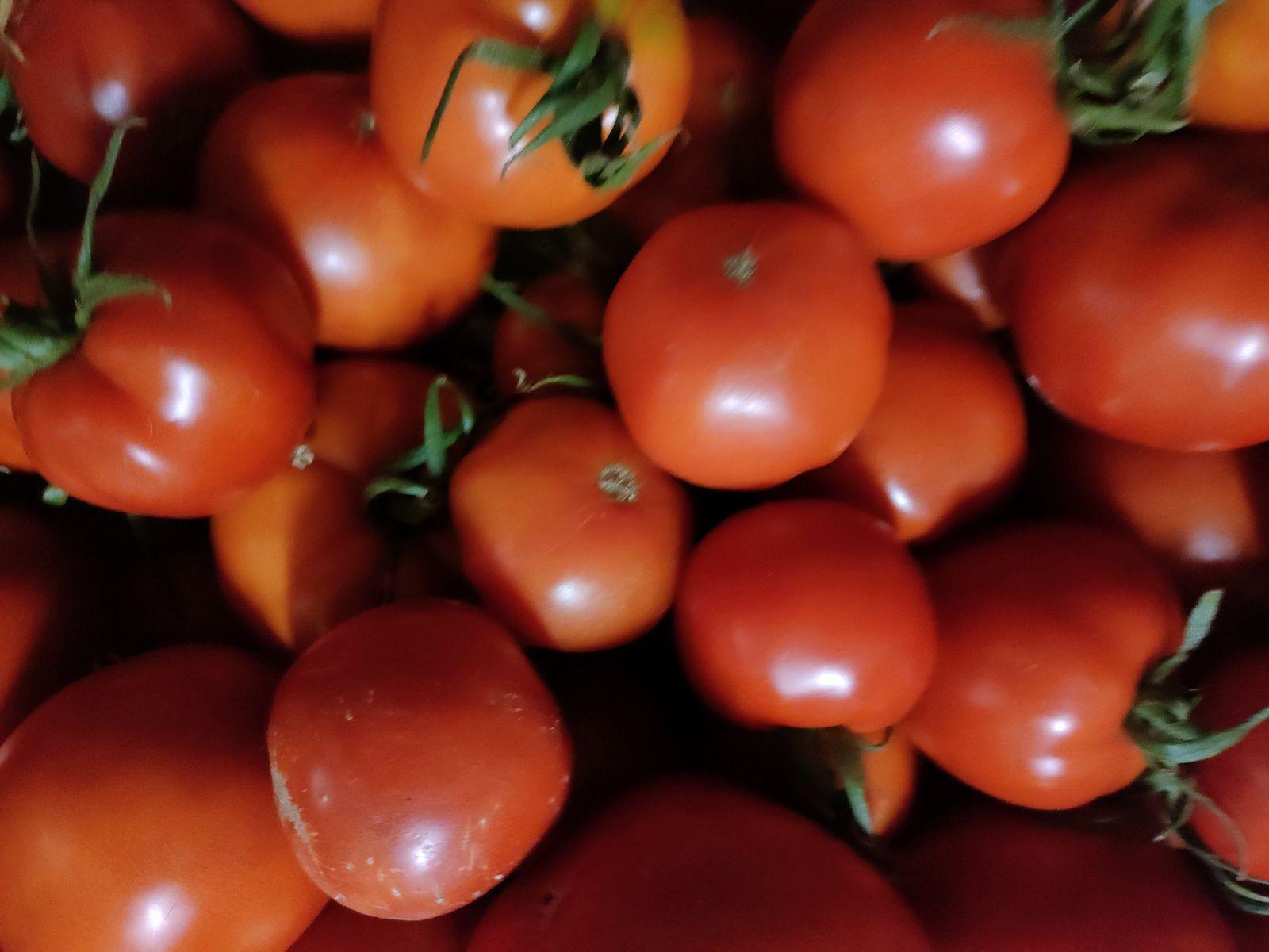 10kg 25€ 🍅🍅🍅 c'est la tomate 🍅🍅🍅