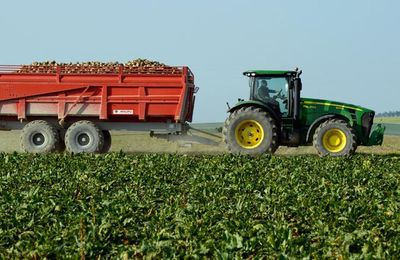 Sauvons l'industrie!!! A grands coups d'insecticides...