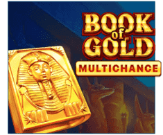 machine a sous mobile Book of Gold Multichance logiciel Playson