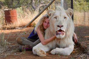 """Gilles de Maistre : """"Mia et le lion blanc a été acheté partout dans le monde… sauf en Afrique du Sud"""""""