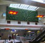 Mur végétal dans le RER E à Magenta