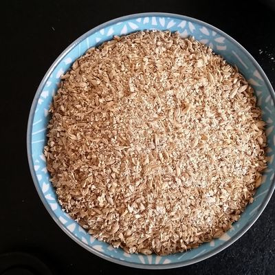 Premier brassin tout grain