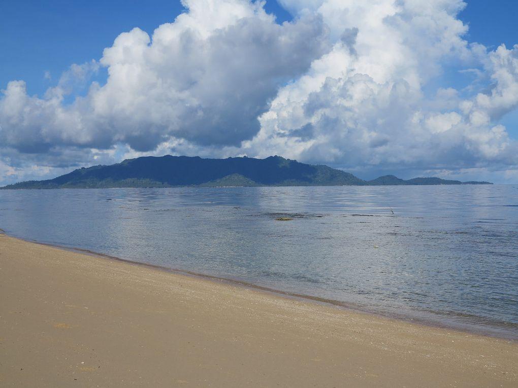 le plus beau de l'île de Hatta, c'est encore dans la mer, sur le tombant !
