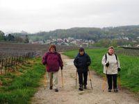 Sortie Marche nordique à Nesles la Montagne le 25 avril 2016