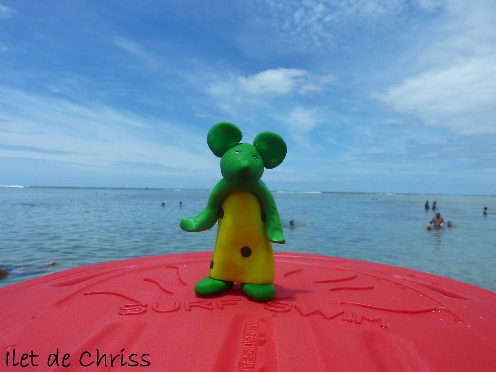Makatia, la souris verte de la tribu des souris primitives est venue me rendre visite sur mon îlet pendant deux mois. Je lui ai fait découvrir la magie de l'île intense. Voir le lien de son créateur L'Autre dans ma liste de liens