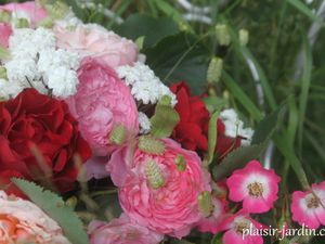 Roses gourmandes