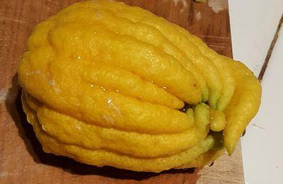 Rien ne se perd dans le citron : utilisation des mains de bouddha...