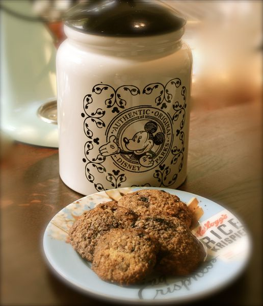 COOKIES AVOINE CHOCOLAT ET MYRTILLES...