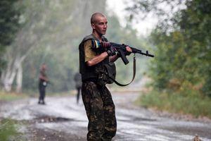 Ukraine. Kiev réclame des armes à l'Otan, mais pas de troupes