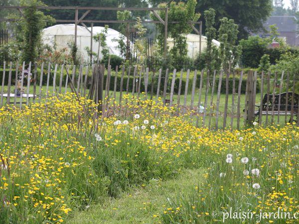 Ouverture de notre jardin du Bois de l'Abbaye en 2020
