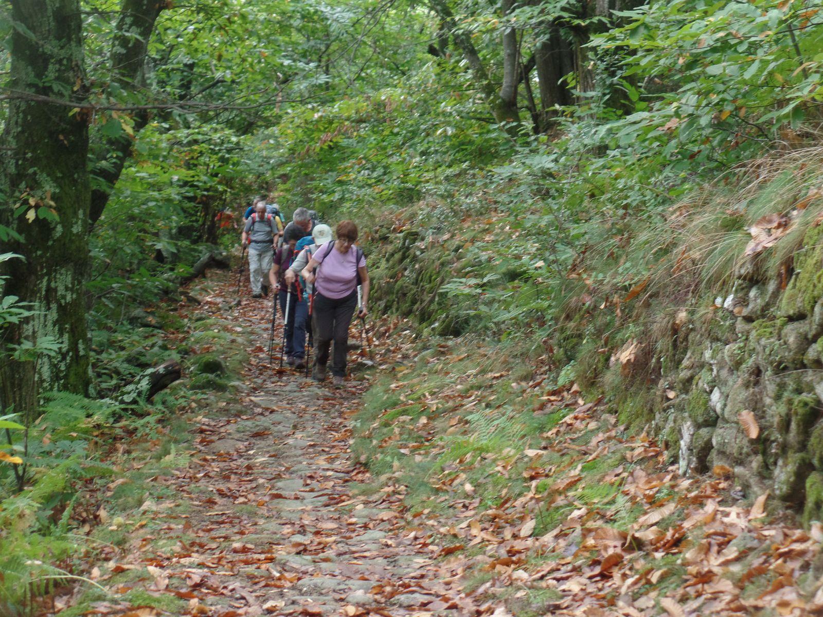 Séjour automne 2021 Genestelle (Ardèche)