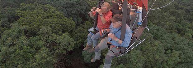 """""""Francis Hallé, une vie en forêt"""", documentaire inédit ce soir sur Ushuaïa TV"""