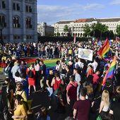 """"""" Promotion """" de l'homosexualité interdite auprès des mineurs en Hongrie"""