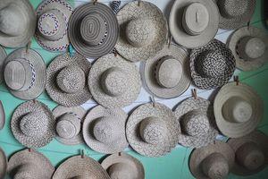 Chapeaux ! Un panama peut en cacher un autre… (3) le sombrero pintado – suite
