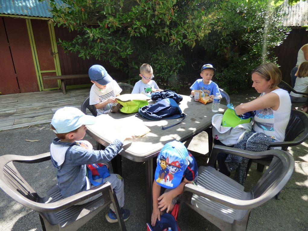 Sortie scolaire des PS MS GS au Zoo de Pont Scorff