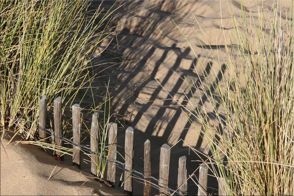 Album - Les dunes et le sable