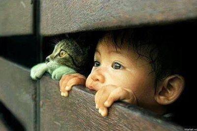 Observation...