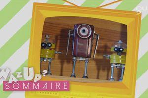 Invasion de robots Wazup, Gulli,  saison7 ep 85