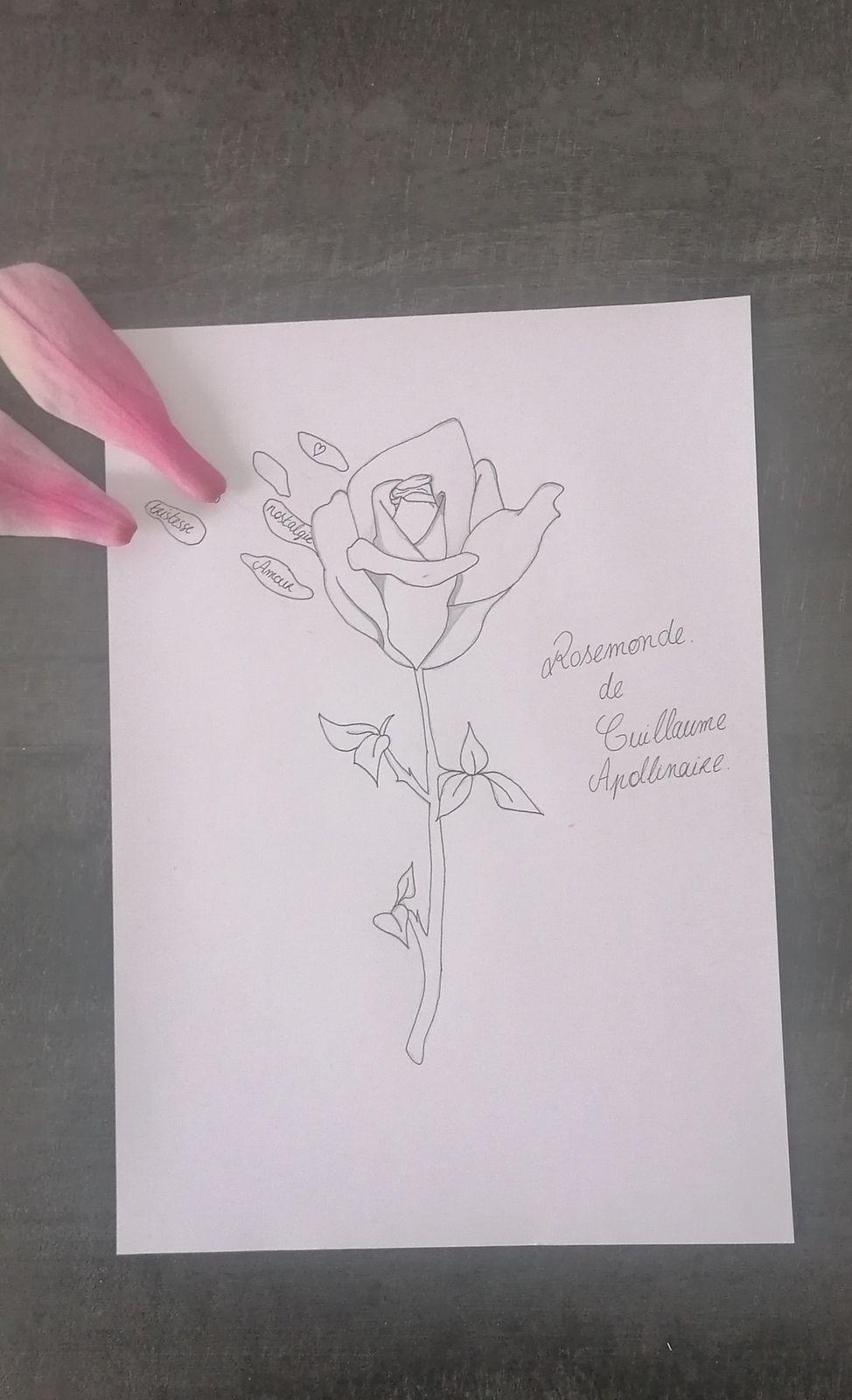 Selfie de poème - Rosemonde