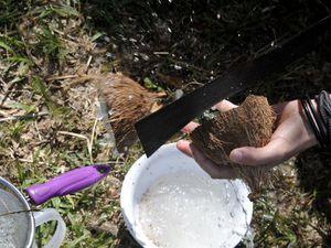 Faire de l'huile de coco vierge