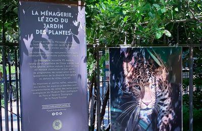 Le zoo de la ménagerie du jardin des plantes