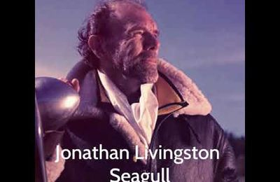 Jonathan Livingston Seagull, Quote