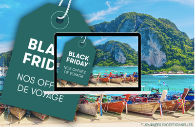 Black Friday - Cathay Pacific compense gratuitement les émissions carbone de ses passagers