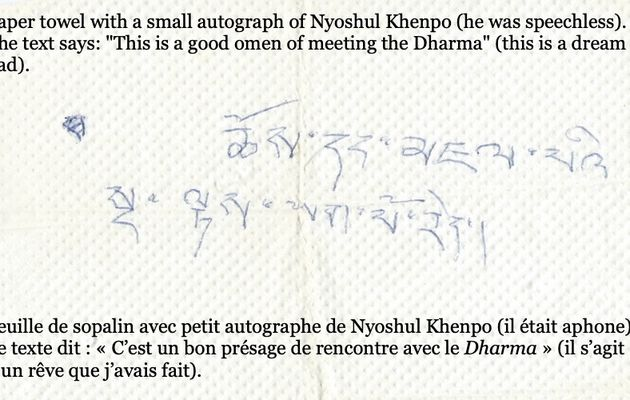 Nyoshul Khen Rinpoche : «This was a good omen [for you] to meet [this] Dharma».