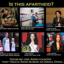 Is This Apartheid ?