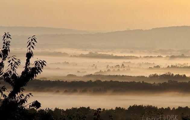 Des nappes de brume sur le Marais Vernier...