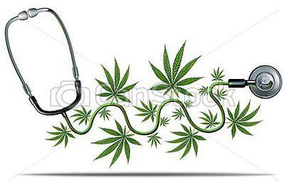 Futures prescriptions de cannabis à visée thérapeutique : mode d'emploi