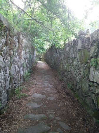 Chemin entre Viana do Castelo et Vila Praia de Âncora.