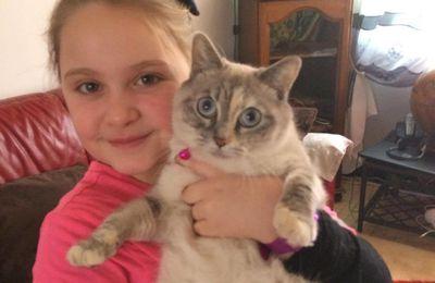 Valérie garde espoir de retrouver Louna, sa chatte siamoise.