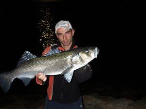 Comment pêcher la grosse daurade royale en méditerranée ?