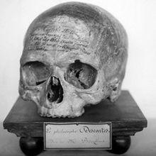 Les cinq crânes de Descartes et leur iCul consécutif