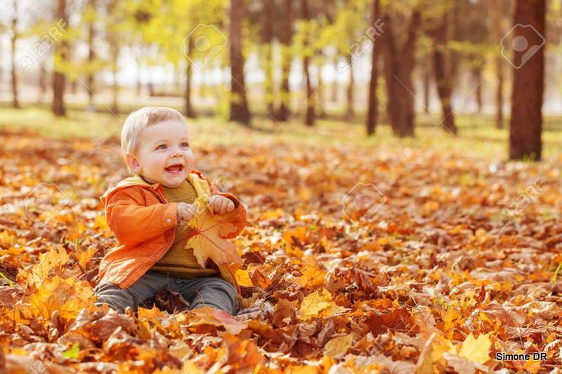Banque d'images : little baby in a sunny autumn park