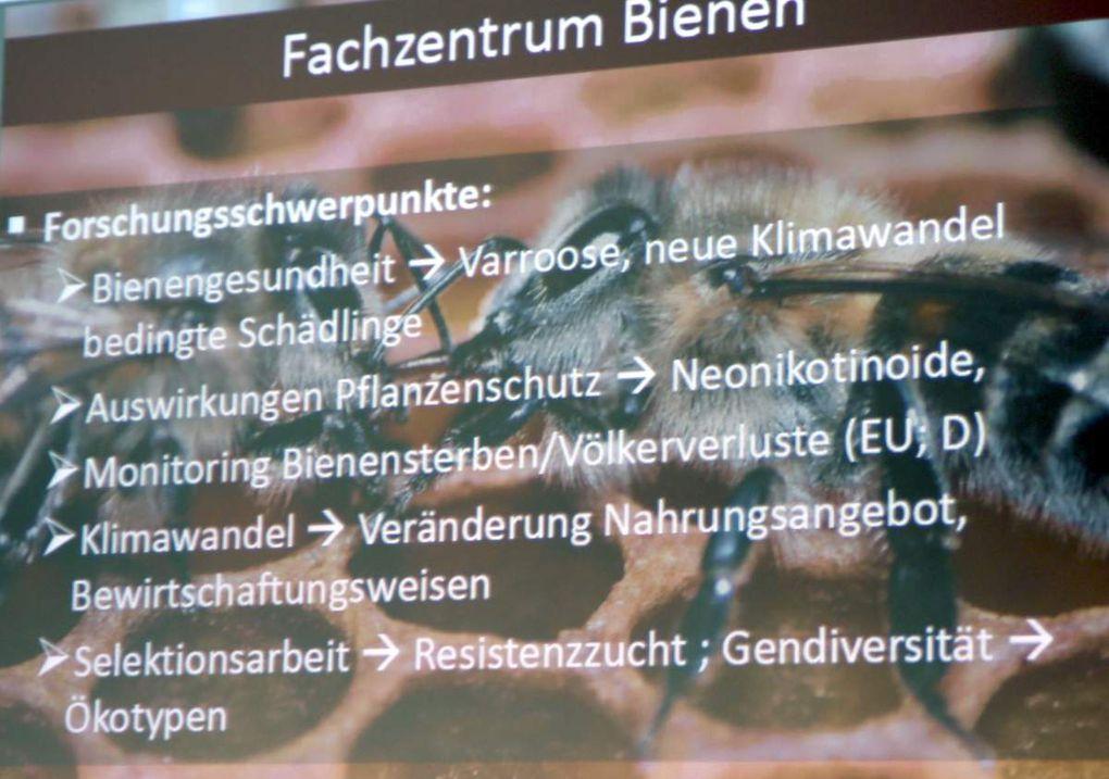 Das Fachzentrum Bienen versteht sich in erster Linie als kompetenter Partner und Dienstleistungseinrichtung der bayerischen Imker, ihrer Verbände und aller mit der Bienenhaltung befassten Institutionen. Aufgrund der besonderen Bedeutung der Bienen für die Bestäubung von Wild- und Kulturpflanzen ist das Fachzentrum auch Ansprechpartner, wenn es um die gesellschaftlichen Leistungen der Bienenhaltung geht.